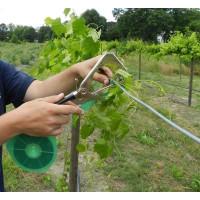 Cleste aparat pentru legat vita de vie ( via ) legume si pomi fructiferi Model 2020