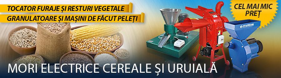 Moara de Cereale si Uruiala Electrica